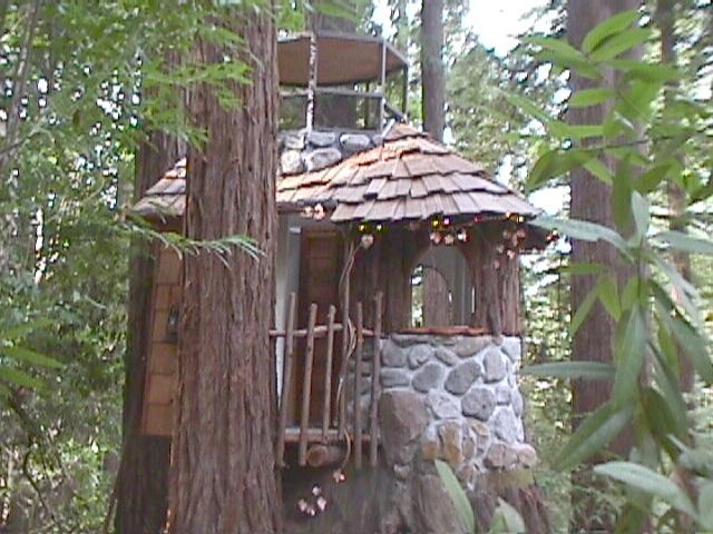 The Stump House